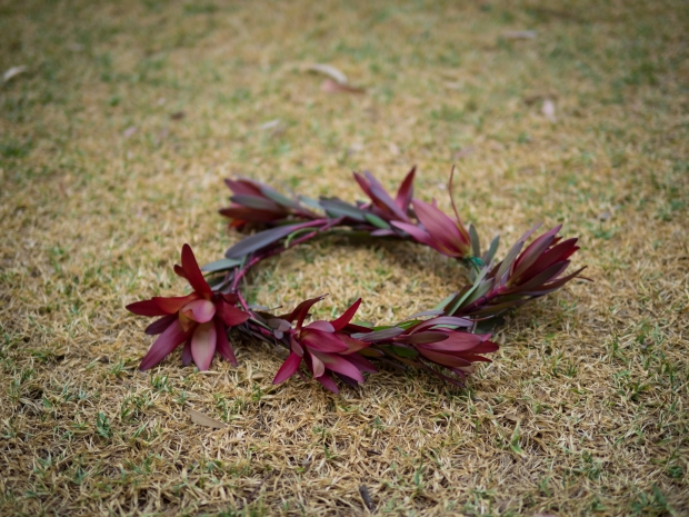 DIY leucodendron fresh flowercrown photoshoot